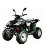 ATV Quad bike 300cc Viper for hire in Larnaca Cyprus